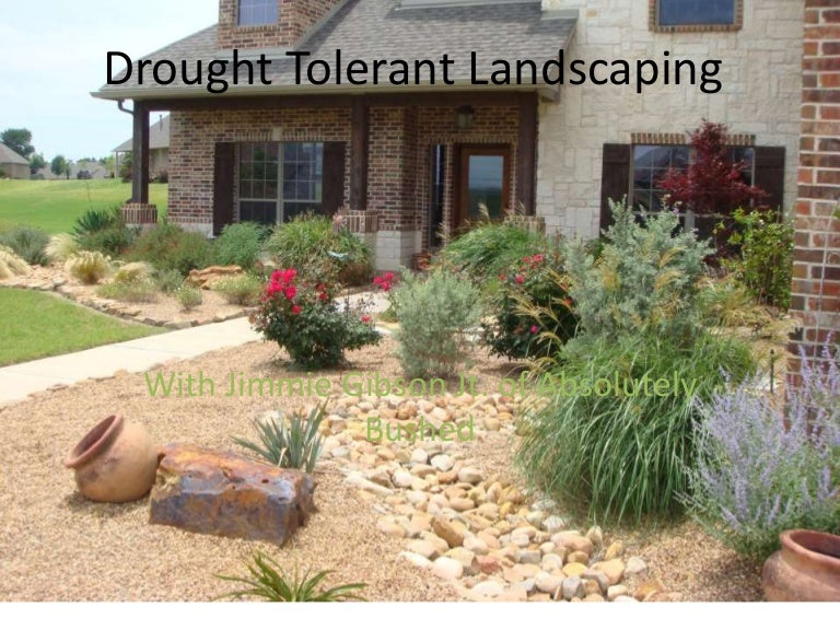 Drought Friendly Landscaping California Drought Resistant