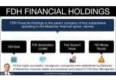 FDH Financial Holdings