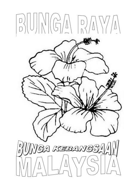 Download 93 Koleksi Gambar Bunga Raya Hitam Putih Paling Keren
