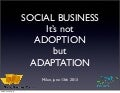 Adoption vs Adaptation - Bertrand Duperrin