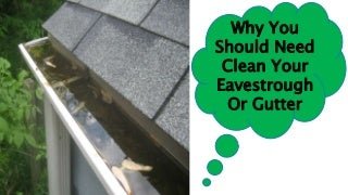 Eavestrough And Gutter Cleaning Service Ottawa