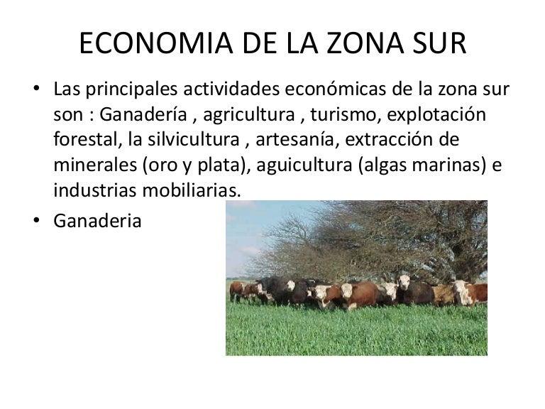 Economia de la zona sur for Poda de arboles zona sur