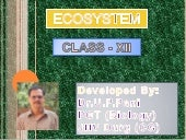 Ecosystem:Structure and Function