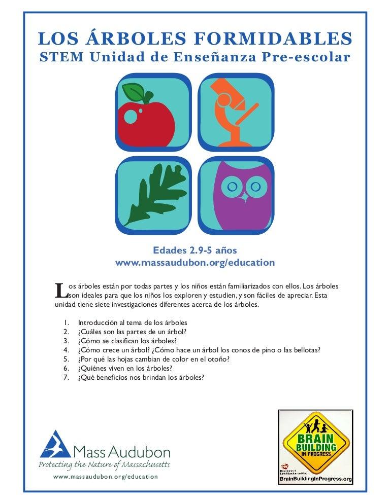 Educación Ambiental Árbol