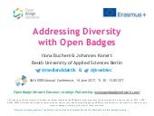 Addressing Diversity with Open Badges