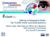 Defining a Pedagogical Model: the TU Delft Online Learning Experience