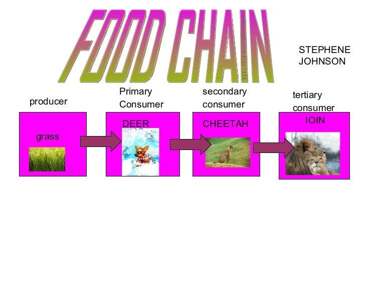 Edwards Food Chain
