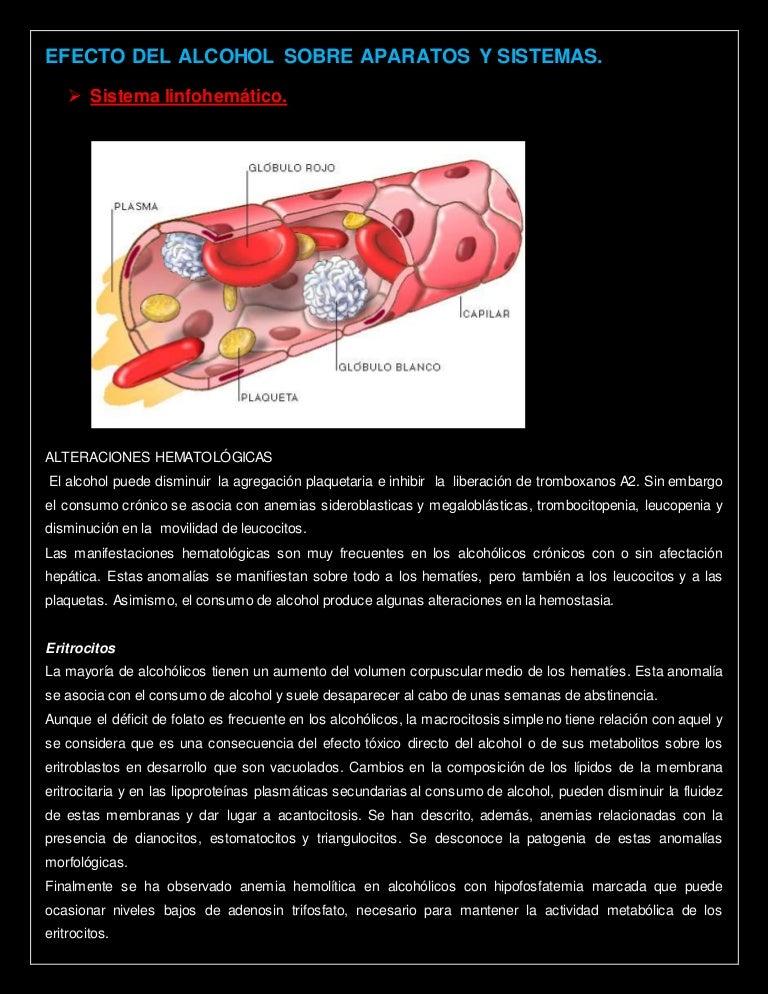efecto del alcohol sobre la diabetes