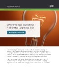 Effective Email Marketing – A Powerful Targeting Tool from Lyris