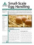 Small-Scale Egg Handling