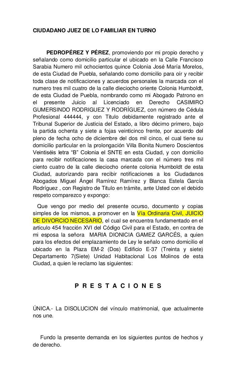 Ejemplo de demandas civiles for Acta familiar