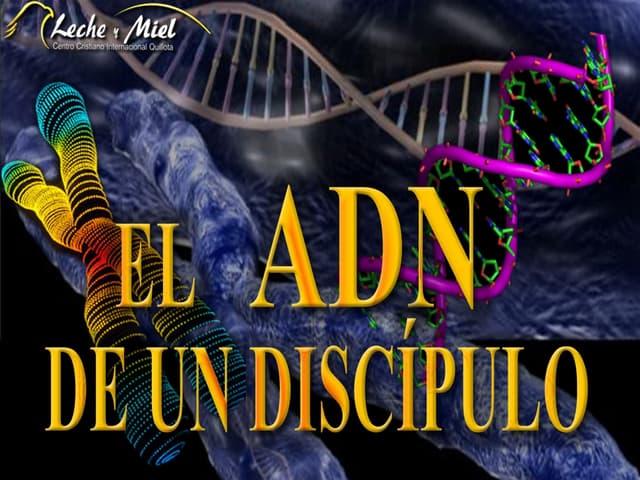 El ADN de un Discipulo