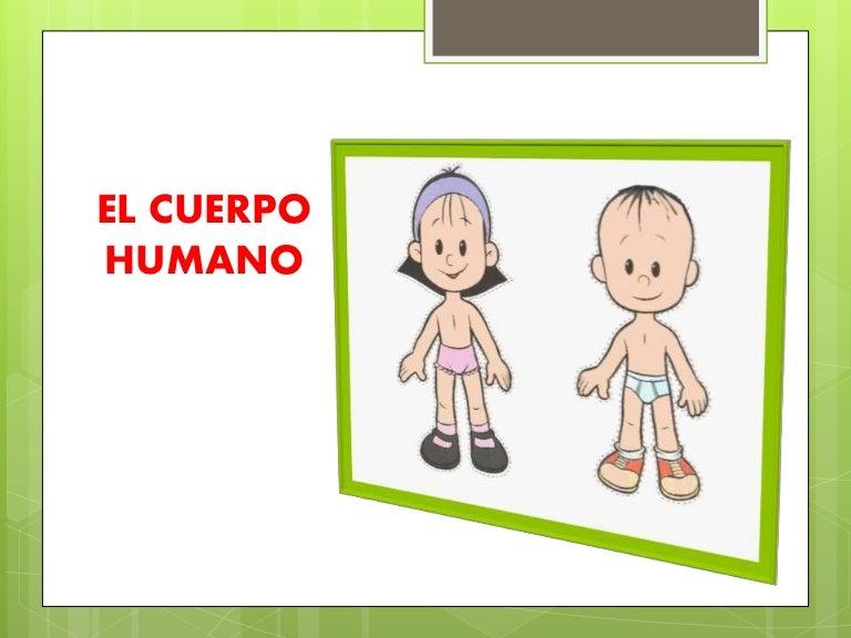 El cuerpo humano nivel inicial