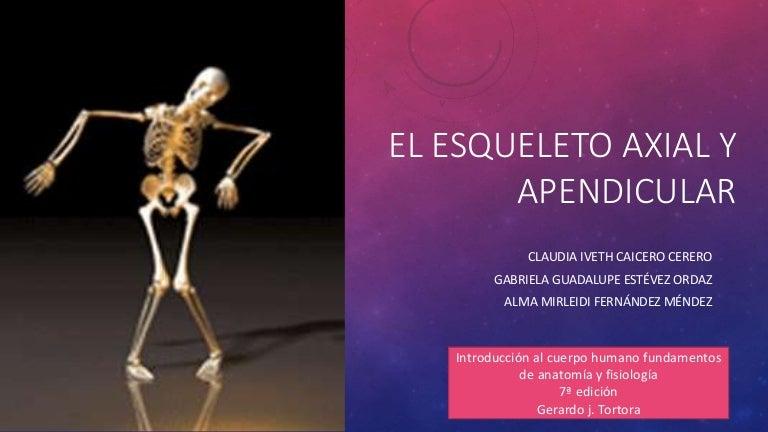 El esqueleto axial y apendicular