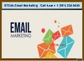 Email Marketing Campaign Services USA