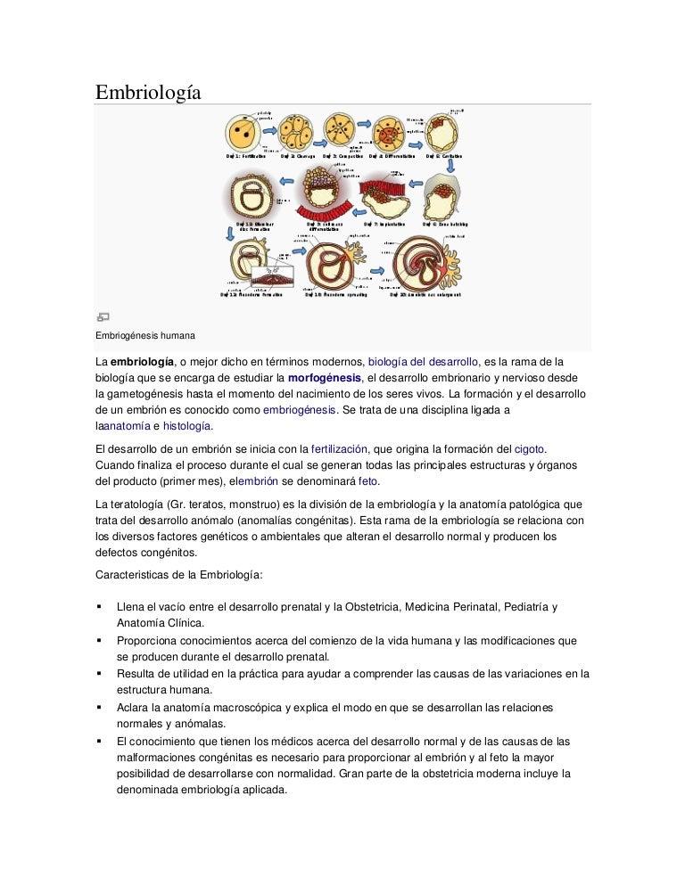 Embriología definición