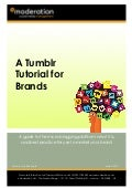 eModeration Tumblr Tutorial for Brands