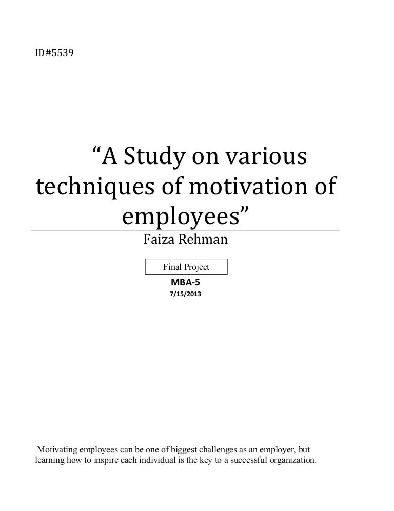 Term Paper On Employee Motivation And Productivity - image 10
