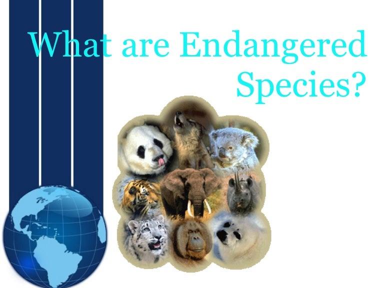 Endangered swinger party endangered — 9