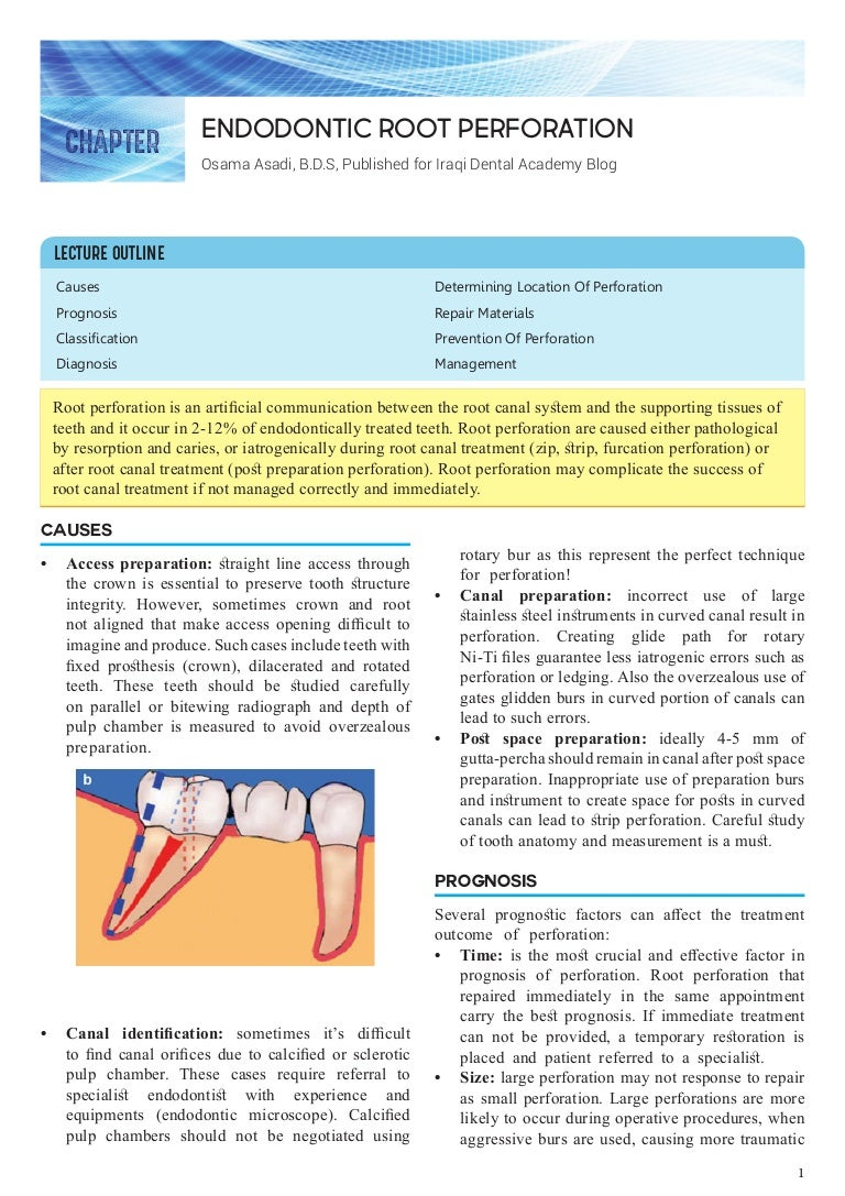 Cervical caries: causes, prevention, treatment 13