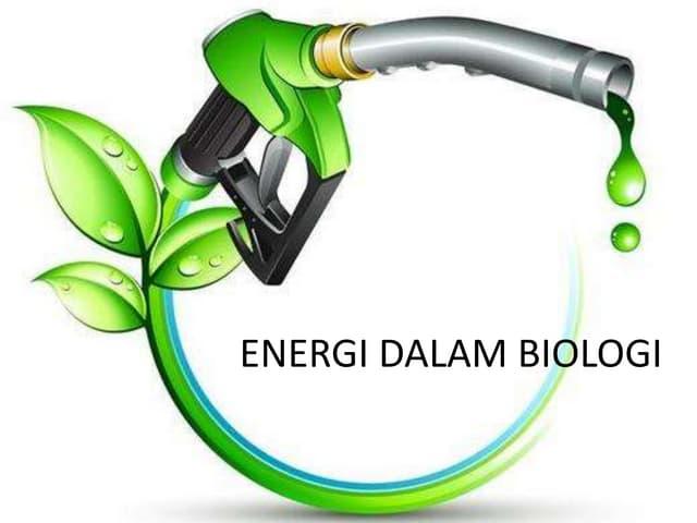 Energi dalam-biologi