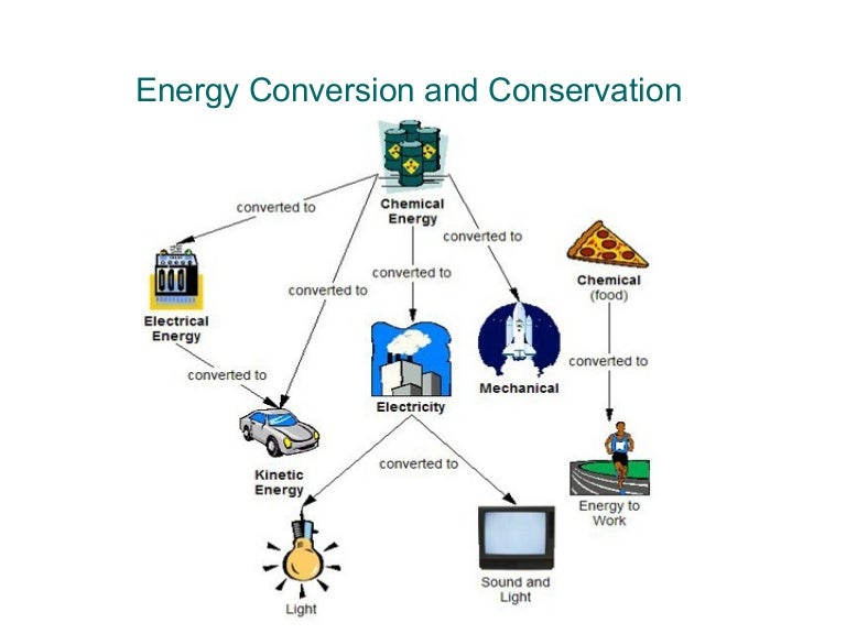 diagram parts of a cell energy conversion diagram transformation of energy #12