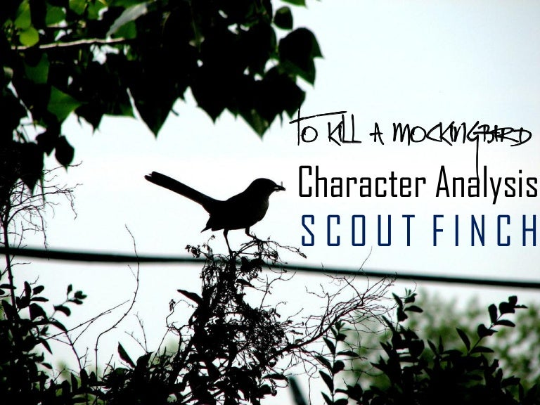scout finch character traits