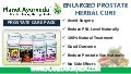 Enlarged Prostate (BPH) Herbal Cure - Prostate Care Pack