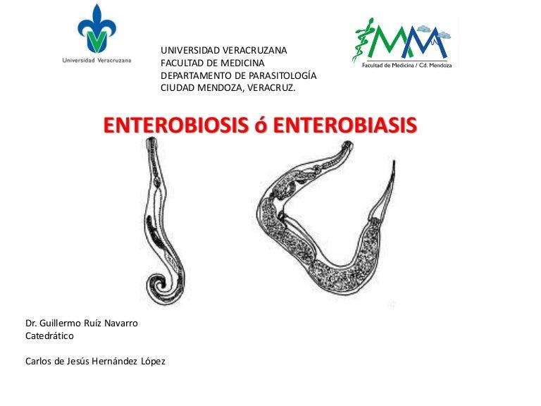 enterobius vermicularis diapositivas