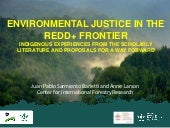 Environmental justice in the redd+ frontier