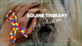 How Equine Therapy Can Benefit People with Autism