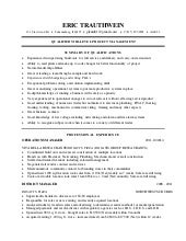 resume it project manager