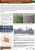 Identification of water use efficient Napier grass accessions using field drought stress