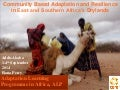 Community Based Adaptation and Resilience in East and Southern Africa's Drylands, by Fiona Percy Care International