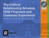 The Critical Relationship Between DSM Programs and Customer Experience