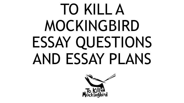 great essay questions for to kill a mockingbird