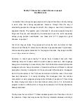 Popular argumentative essay editor service online
