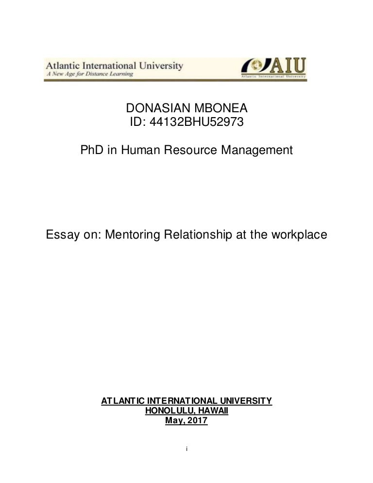 essay on mentorship aiu final
