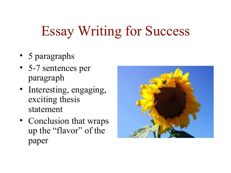 essay writing for success