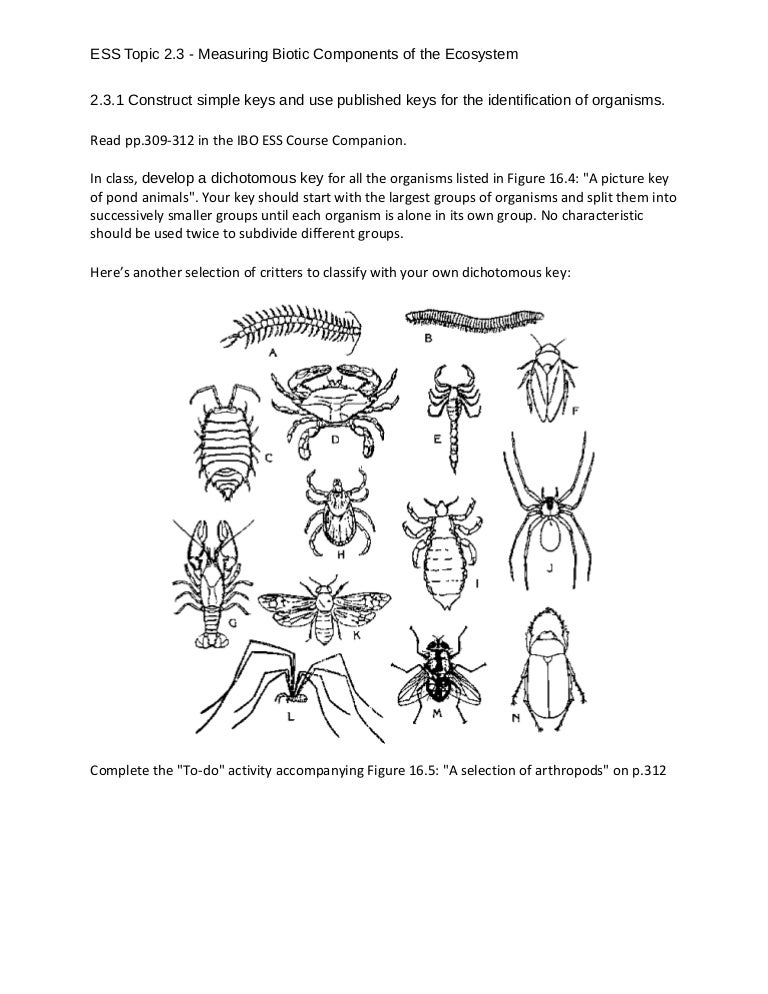 biotic and abiotic components of ecosystem pdf