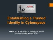 Establishing a trusted identity in cyberspace