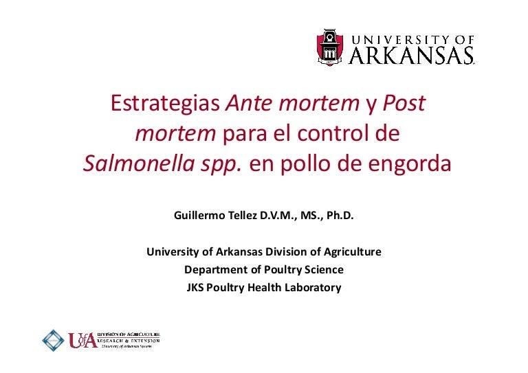 Estrategias de ante mortem y post mortem para el control de salmonell…
