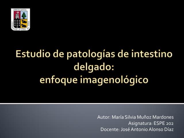 Estudio de patologías de intestino delgado