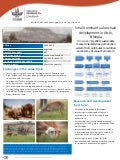 Small ruminant value chain development in Atsbi, Ethiopia
