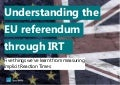 Understanding the EU Referendum through IRT