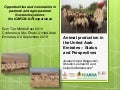 Opportunities and constraints in pastoral and agro-pastoral livestock systems: The ICARDA/ILRI experience