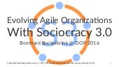Evolving Agile Organizations with S3 (OOP 2016)