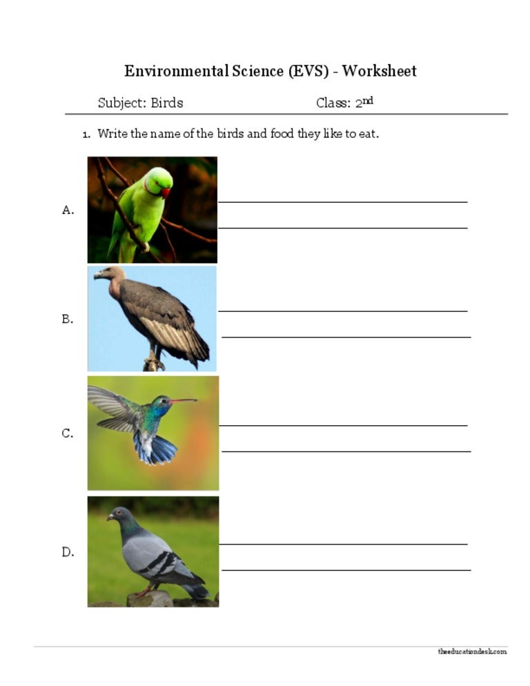 Environmental science review worksheet answers