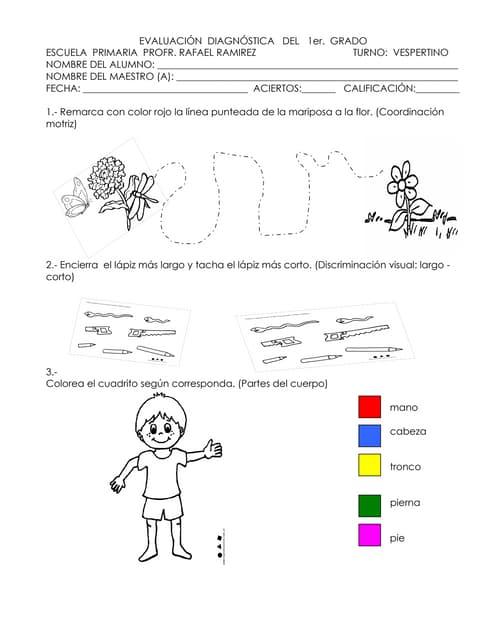 Examen 1° 2011