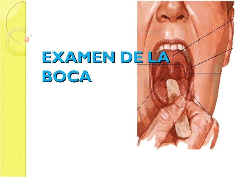 Examen de la Boca